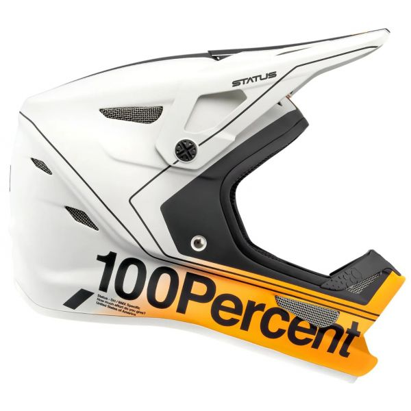 100% Status Youth Full Face Downhill/BMX Helmet - Carby/Silver